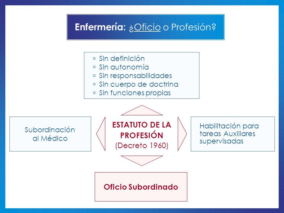 ESTATUTO DE LA PROFESIÓN