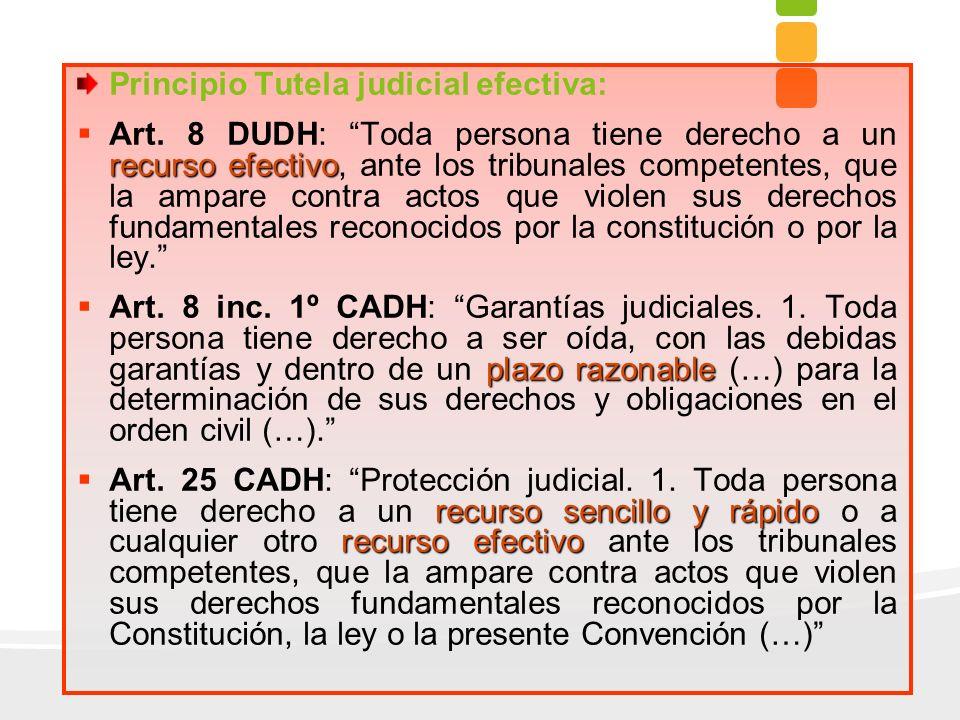 Principio Tutela judicial efectiva: