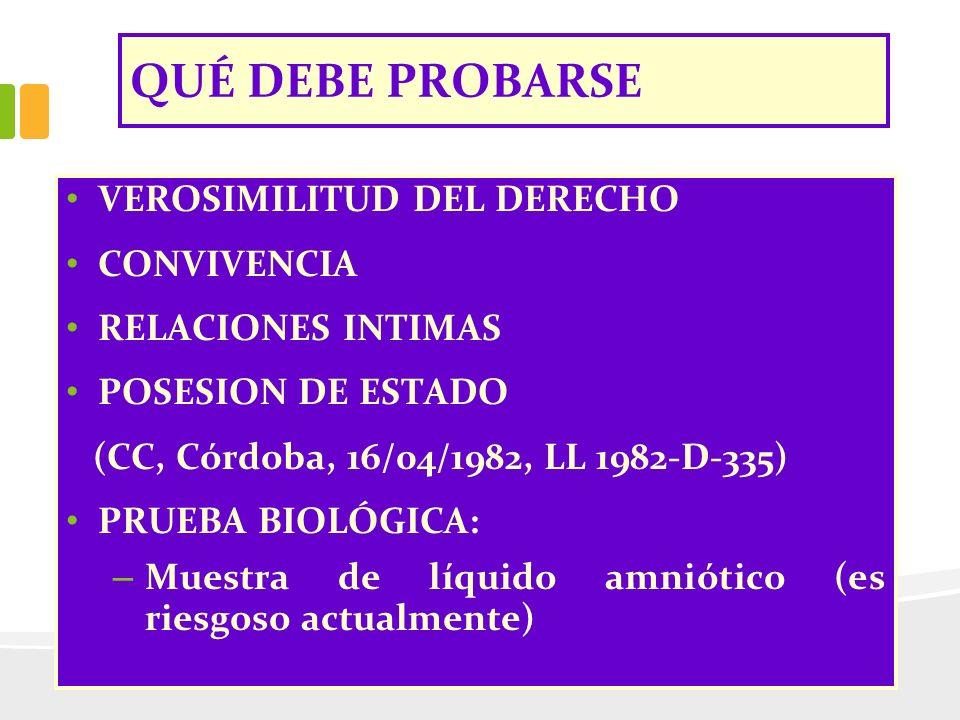 QUÉ DEBE PROBARSE VEROSIMILITUD DEL DERECHO CONVIVENCIA