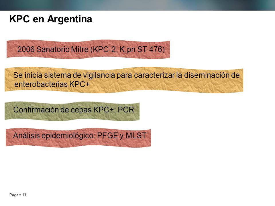 KPC en Argentina 2006 Sanatorio Mitre (KPC-2, K.pn ST 476)