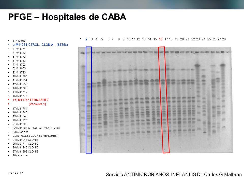 PFGE – Hospitales de CABA
