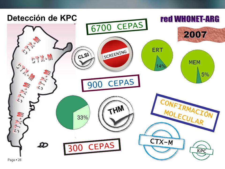 red WHONET-ARG CTX-M CTX-M CTX-M CTX-M CTX-M CTX-M 6700 CEPAS 2007