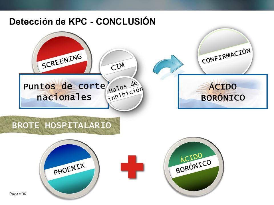 Detección de KPC - CONCLUSIÓN