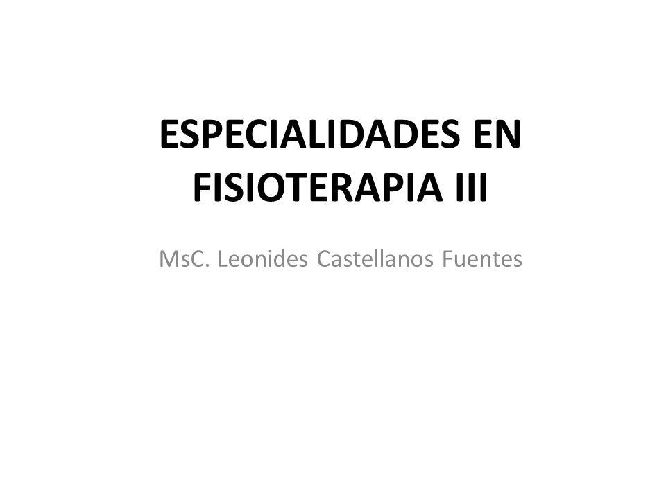 MsC. Leonides Castellanos Fuentes