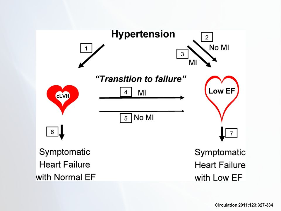 The 7 pathways in the progression from hypertension to heart failure