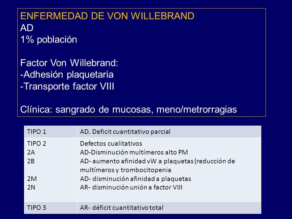 ENFERMEDAD DE VON WILLEBRAND AD 1% población Factor Von Willebrand:
