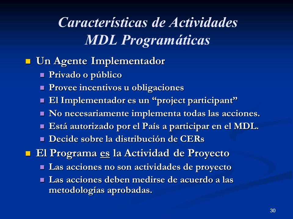 Características de Actividades MDL Programáticas