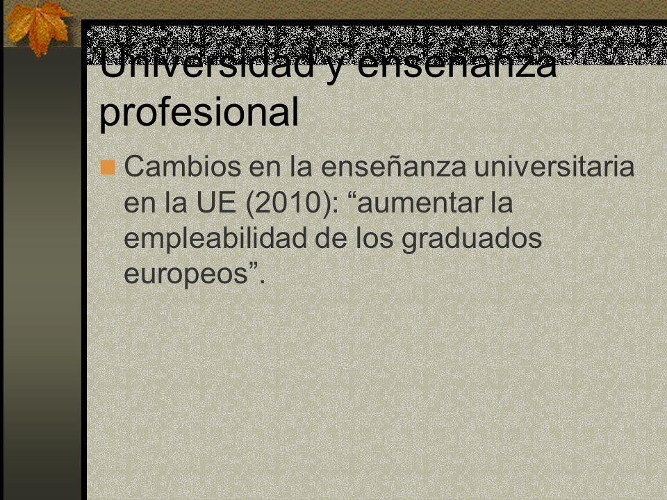 Universidad y enseñanza profesional