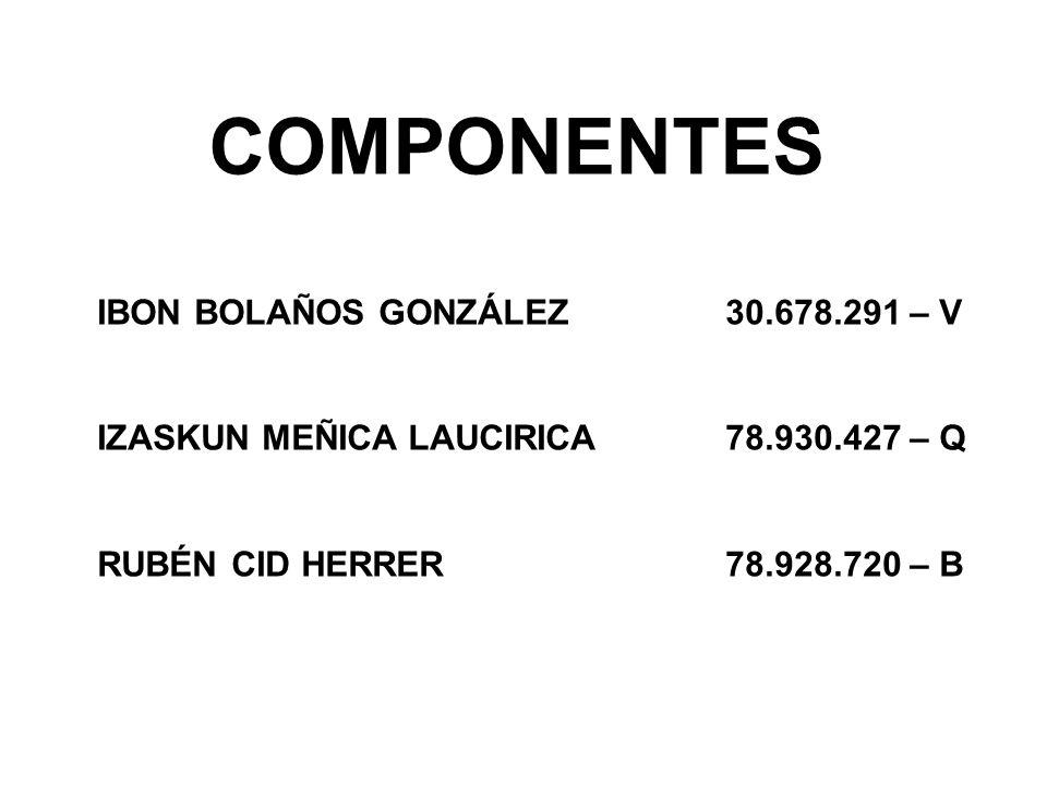 COMPONENTES IBON BOLAÑOS GONZÁLEZ 30.678.291 – V