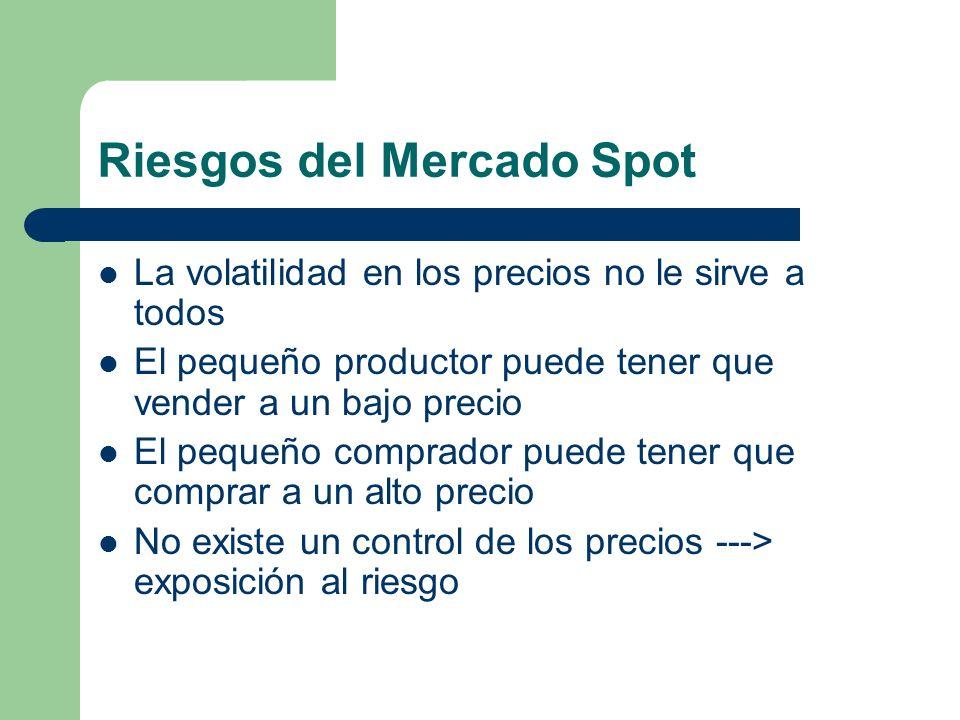 Riesgos del Mercado Spot