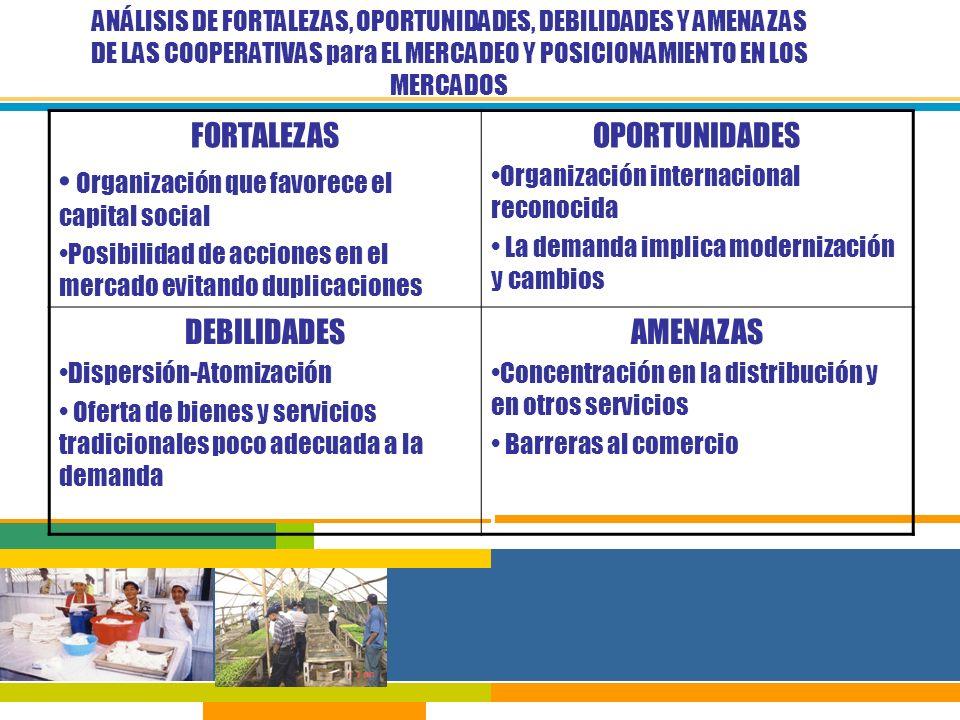 Organización que favorece el capital social OPORTUNIDADES