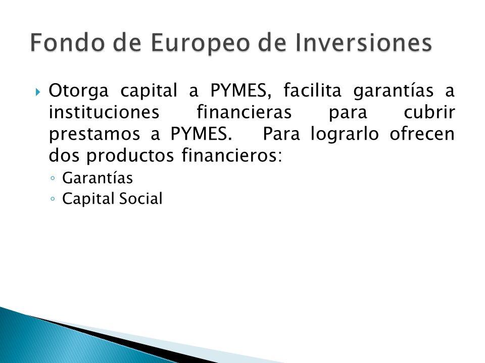 Fondo de Europeo de Inversiones