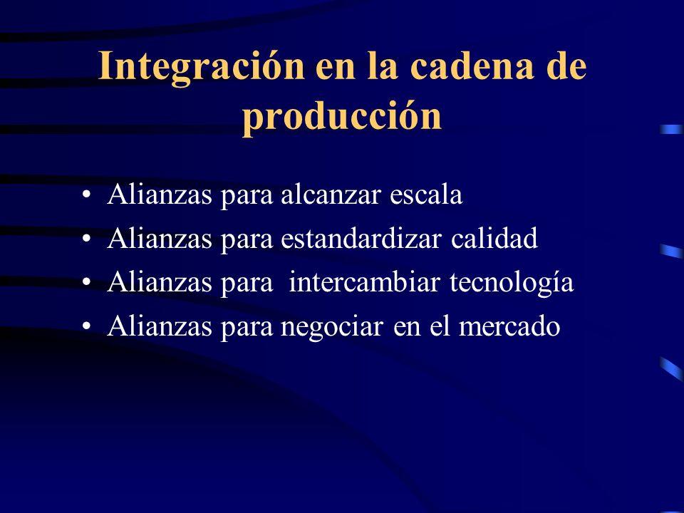 Integración en la cadena de producción