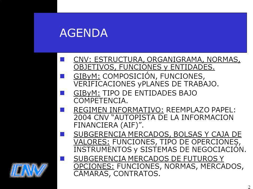 AGENDA CNV: ESTRUCTURA, ORGANIGRAMA, NORMAS, OBJETIVOS, FUNCIONES y ENTIDADES. GIByM: COMPOSICIÓN, FUNCIONES, VERIFICACIONES yPLANES DE TRABAJO.