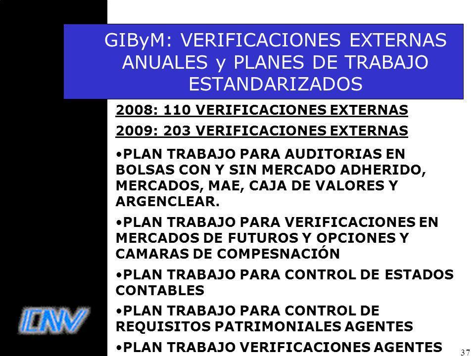 GIByM: VERIFICACIONES EXTERNAS ANUALES y PLANES DE TRABAJO ESTANDARIZADOS