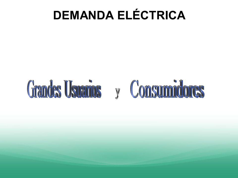 DEMANDA ELÉCTRICA Grandes Usuarios Consumidores y