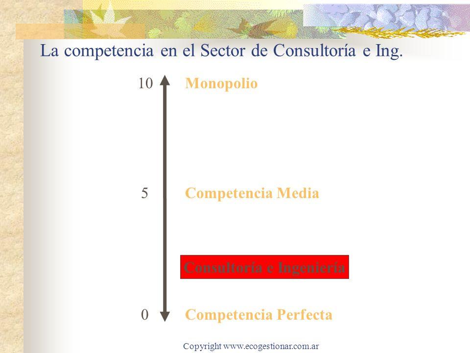 La competencia en el Sector de Consultoría e Ing.