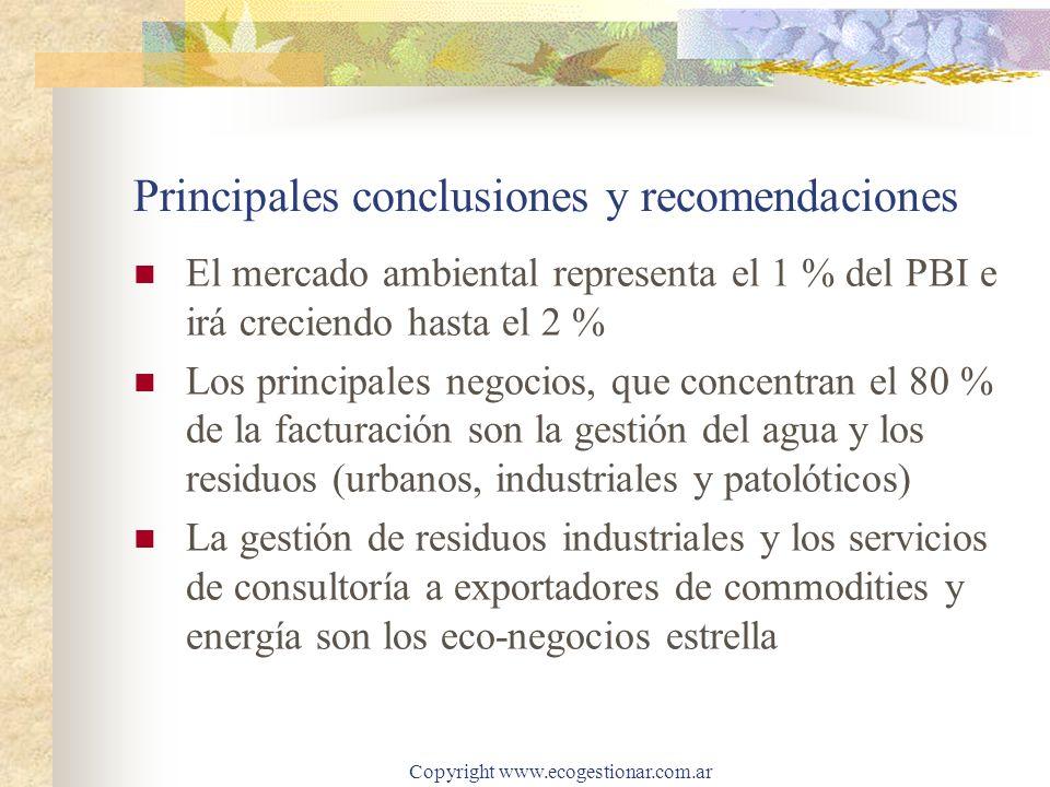 Principales conclusiones y recomendaciones
