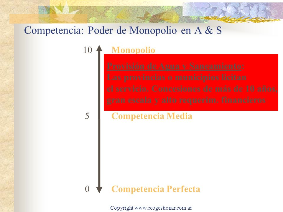 Competencia: Poder de Monopolio en A & S