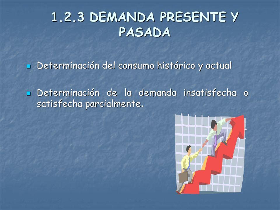 1.2.3 DEMANDA PRESENTE Y PASADA