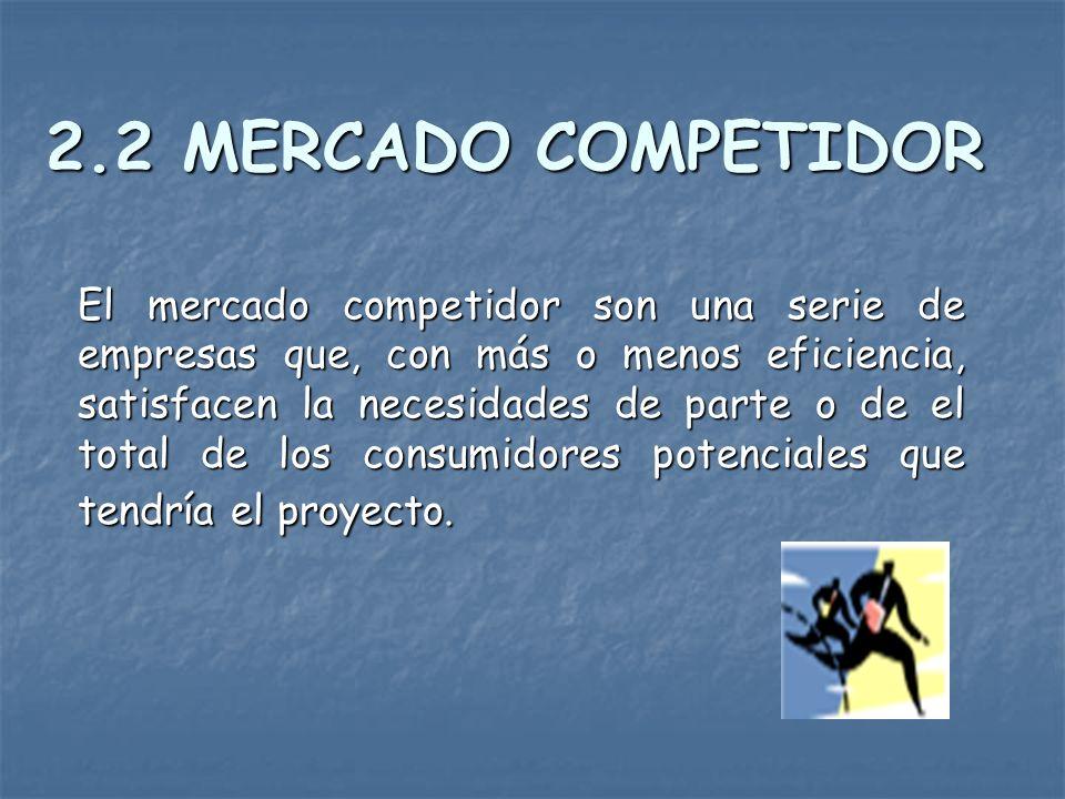 2.2 MERCADO COMPETIDOR