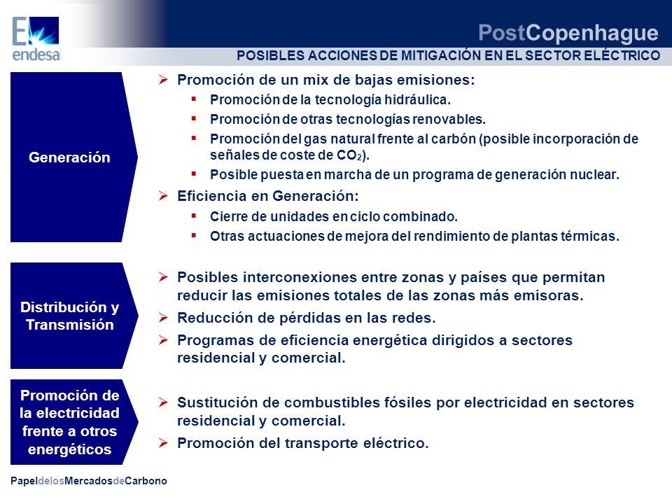 POSIBLES ACCIONES DE MITIGACIÓN EN EL SECTOR ELÉCTRICO