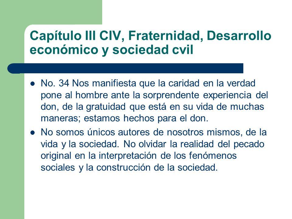 Capítulo III CIV, Fraternidad, Desarrollo económico y sociedad cvil