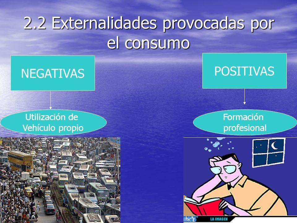 2.2 Externalidades provocadas por el consumo
