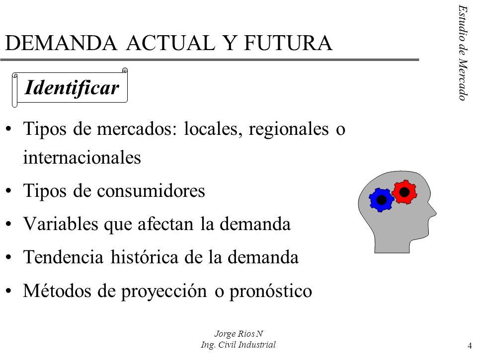 DEMANDA ACTUAL Y FUTURA
