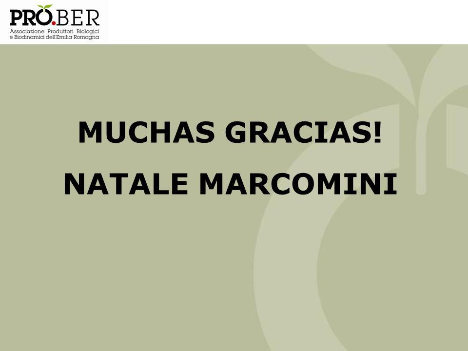 MUCHAS GRACIAS! NATALE MARCOMINI