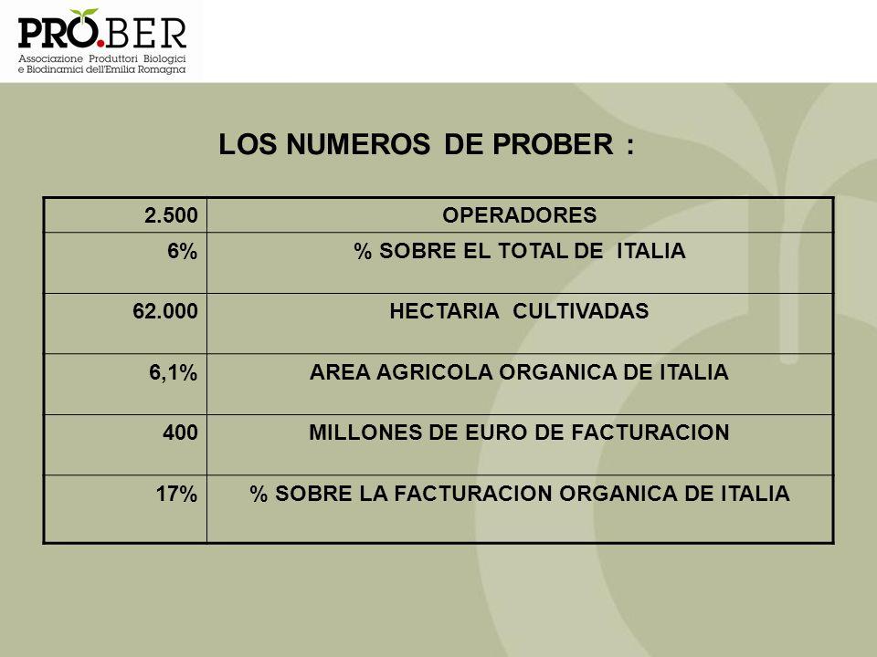 LOS NUMEROS DE PROBER : 2.500 OPERADORES 6% % SOBRE EL TOTAL DE ITALIA