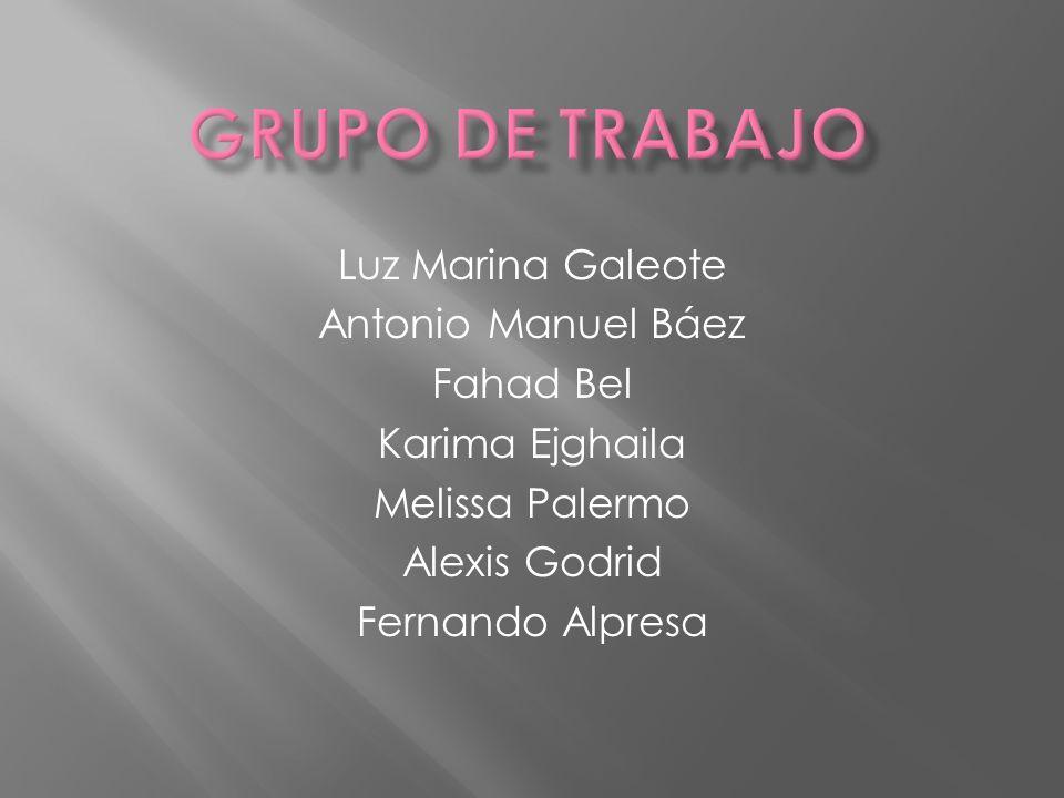 Grupo de trabajo Luz Marina Galeote Antonio Manuel Báez Fahad Bel