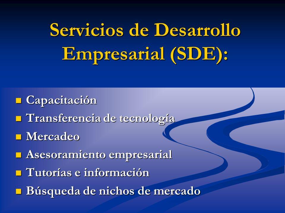 Servicios de Desarrollo Empresarial (SDE):