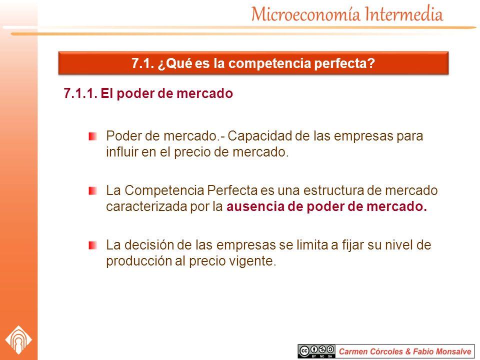 7.1. ¿Qué es la competencia perfecta