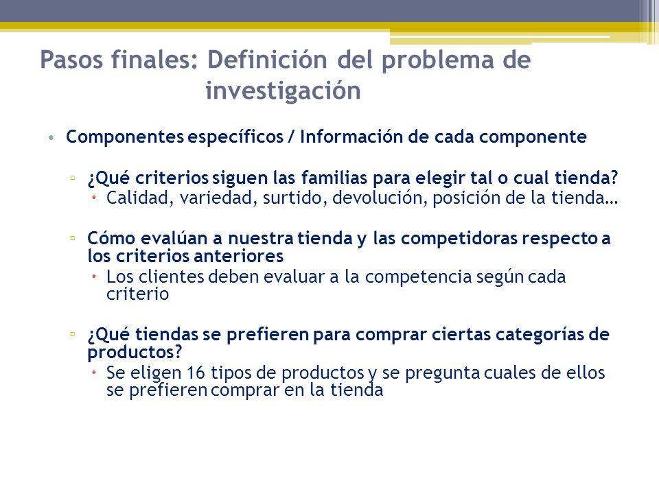 Pasos finales: Definición del problema de investigación