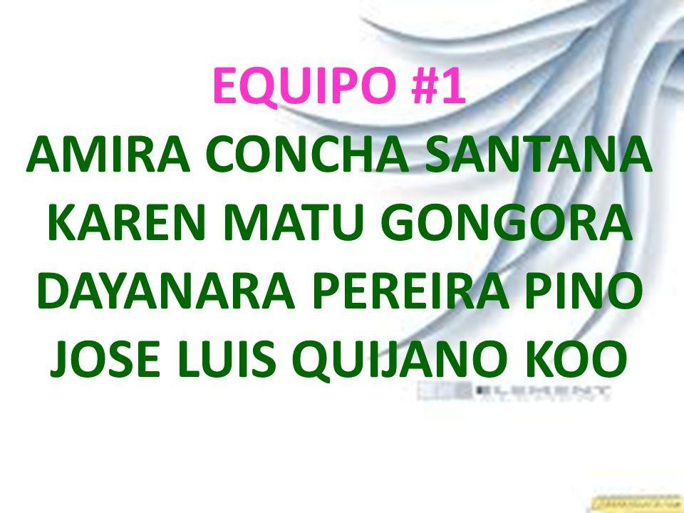 EQUIPO #1 AMIRA CONCHA SANTANA KAREN MATU GONGORA DAYANARA PEREIRA PINO JOSE LUIS QUIJANO KOO