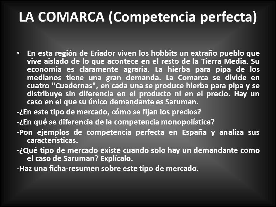 LA COMARCA (Competencia perfecta)