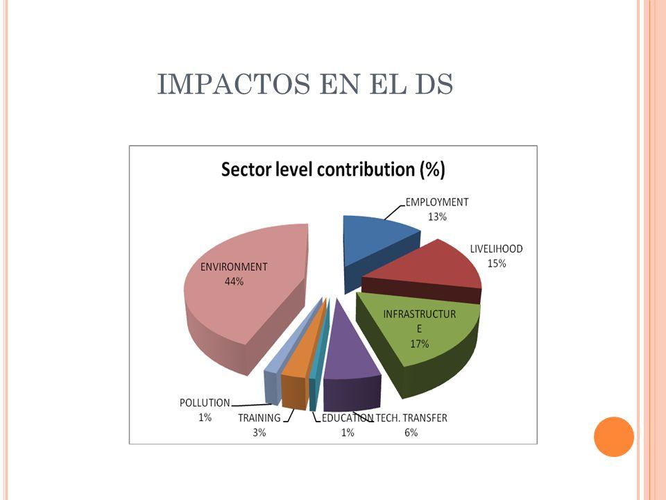 IMPACTOS EN EL DS