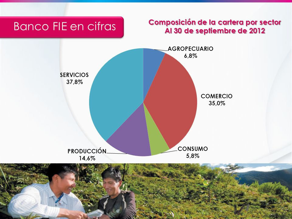 Composición de la cartera por sector