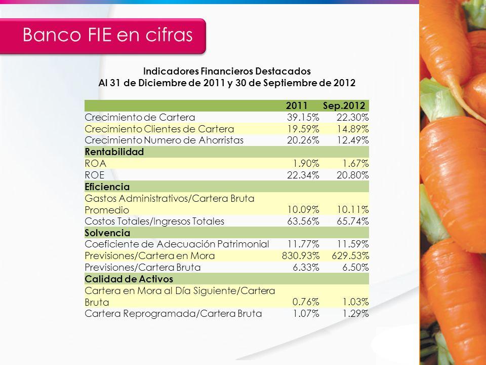 Banco FIE en cifras Indicadores Financieros Destacados