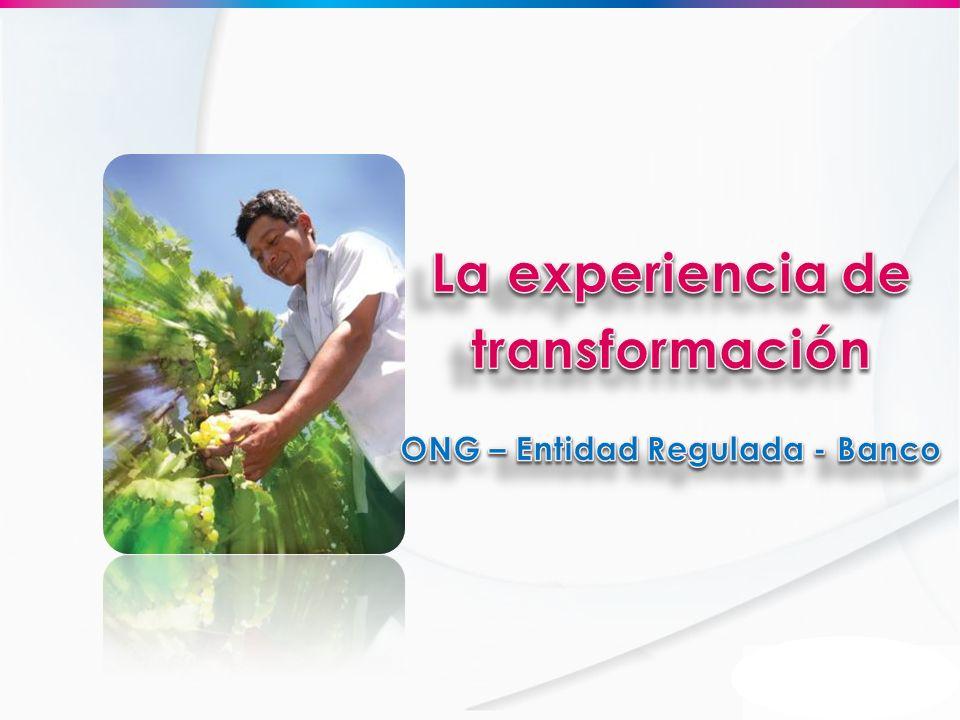 La experiencia de transformación ONG – Entidad Regulada - Banco