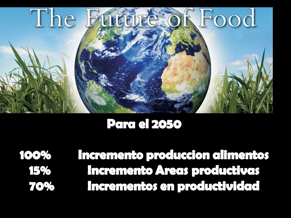 100% Incremento produccion alimentos 15% Incremento Areas productivas