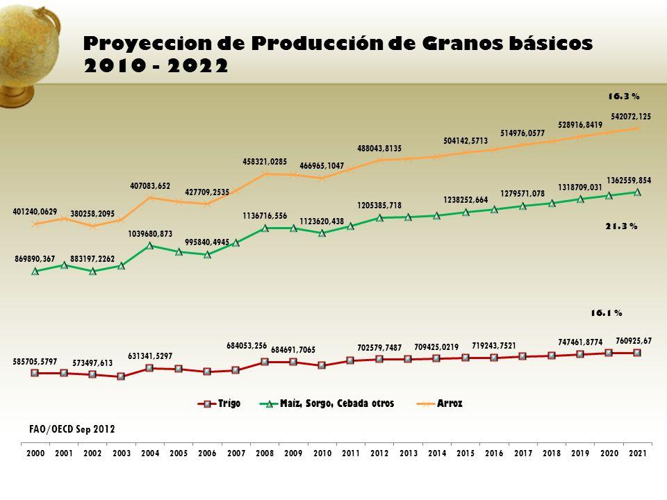 Proyeccion de Producción de Granos básicos 2010 - 2022