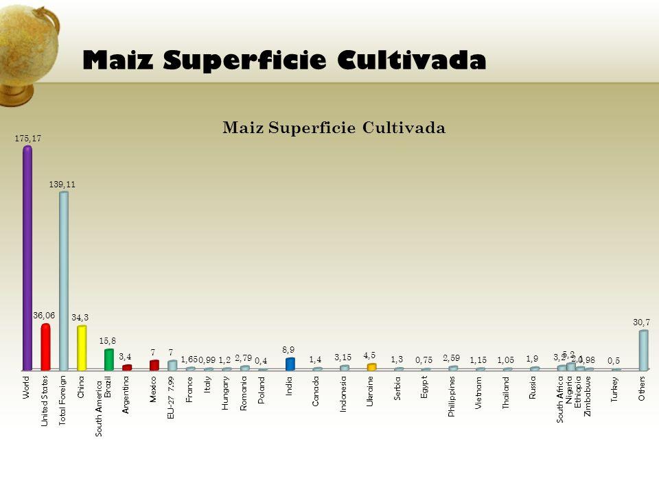 Maiz Superficie Cultivada