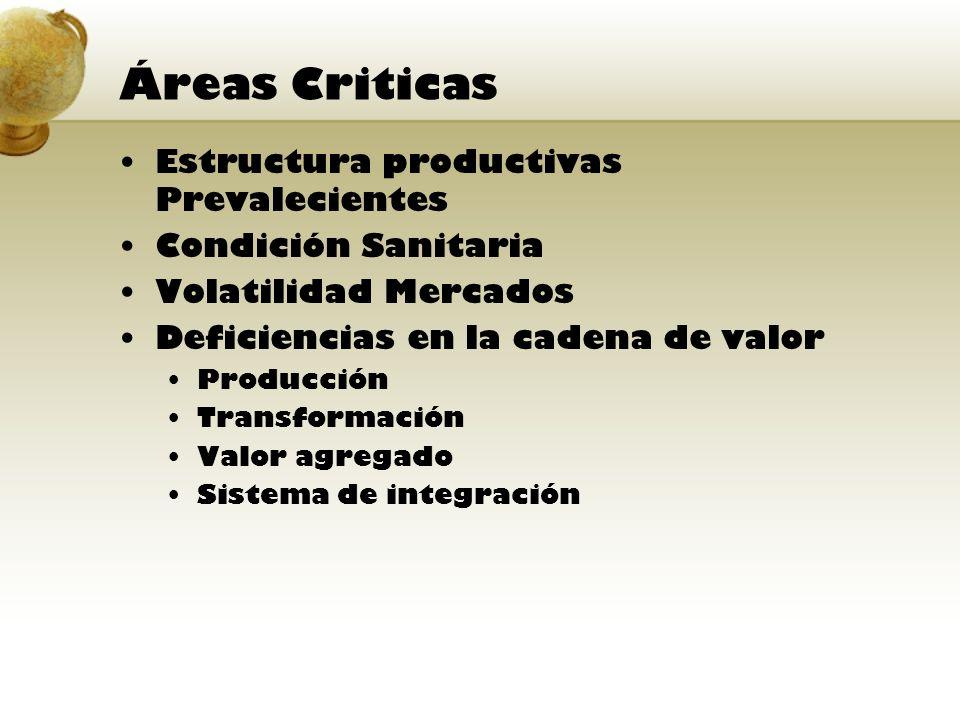Áreas Criticas Estructura productivas Prevalecientes