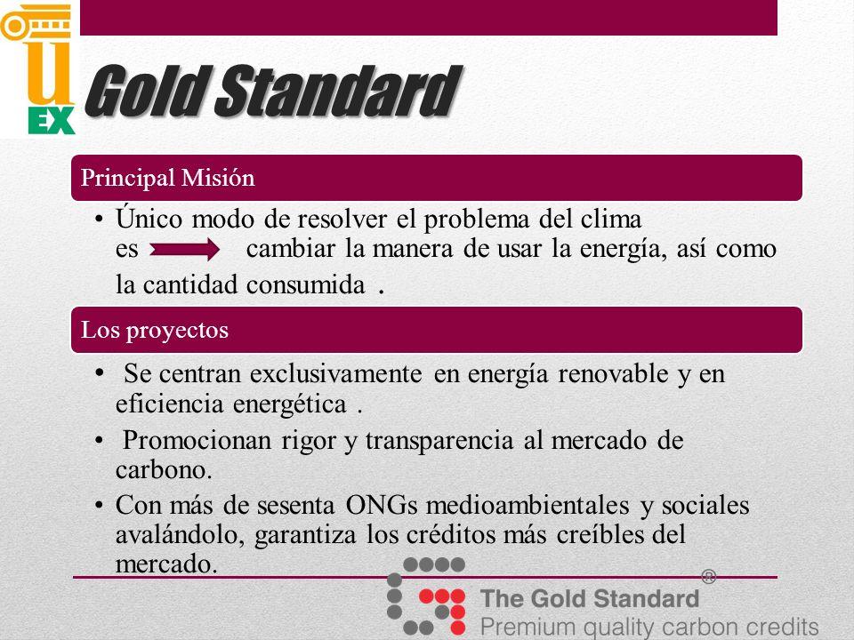 Gold Standard Principal Misión.