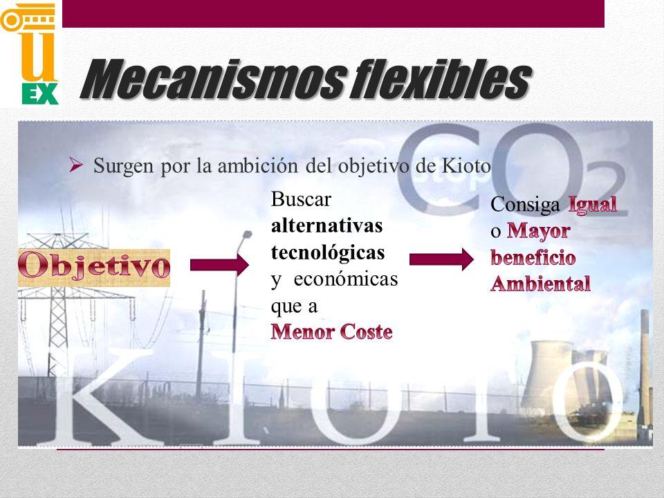 Mecanismos flexibles Objetivo