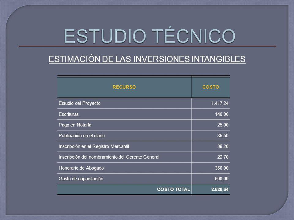 ESTIMACIÓN DE LAS INVERSIONES INTANGIBLES
