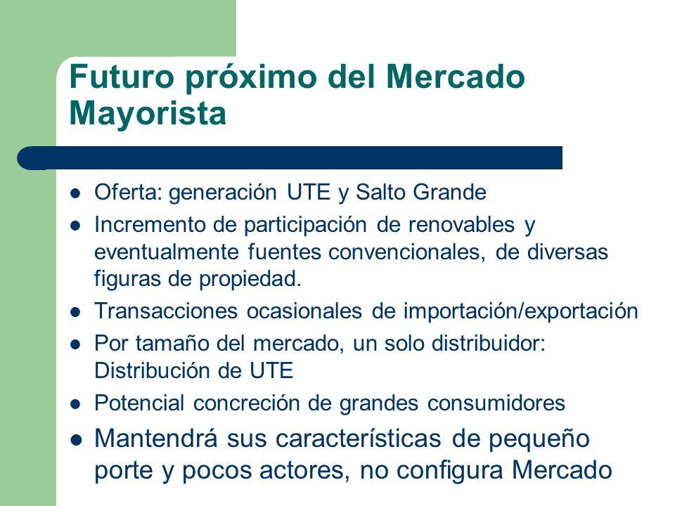 Futuro próximo del Mercado Mayorista