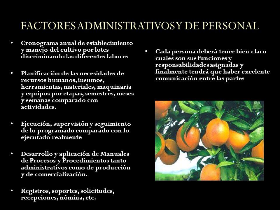 FACTORES ADMINISTRATIVOS Y DE PERSONAL
